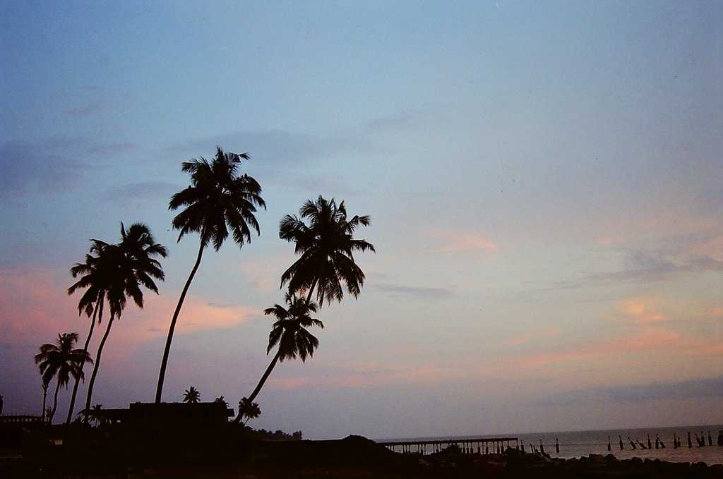 Top 5 Best Places to Visit in Kerala